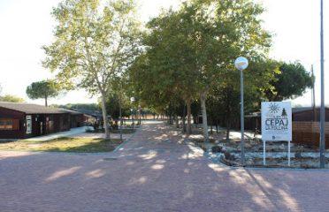 Centro Municipal La Pollina