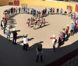Finca El Pino Capeas en Brunete