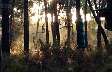 Aventura Amazonia – Parque de aventura y tirolinas. Multiaventura para niños. Despedidas
