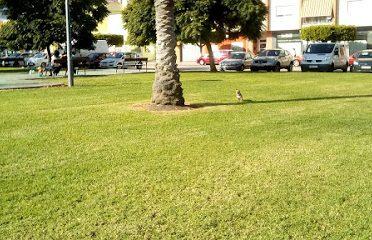 Parc Corts Valencianes