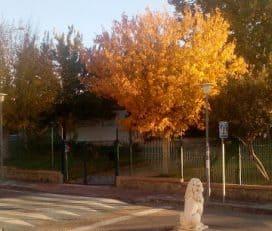 Parque Cercado Largo