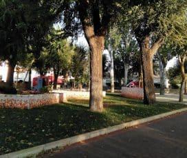 Parque El Pilar