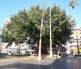 Plaza Eliptica