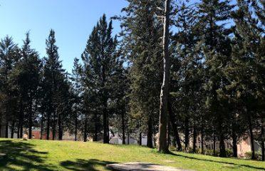 Parc del Pinell