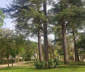 Parc de la Font del Canyo