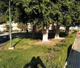 Parque Lorenzo