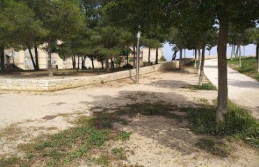 Parque Dama De Elche